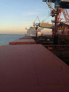 Panamax Bulk Carriers
