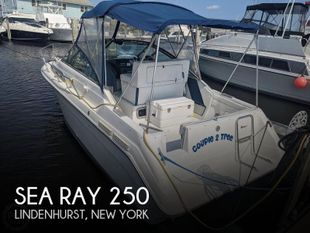 1989 Sea Ray 250 Sundancer