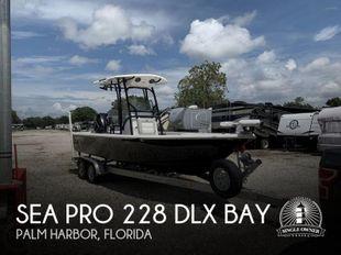 2019 Sea Pro 228 DLX BAY