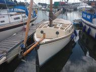 Norfolk Gypsy