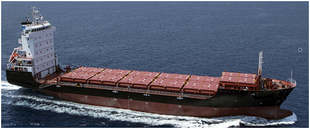 124mt gearless 750 TEU Container Ship