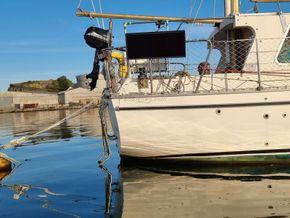 Colvic 31 Sailor - Stern