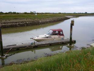 Searay Sundancer Cruiser