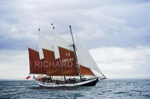 3 Masted Gaff Schooner Tall Ship With Sail Charter Business