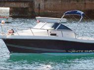 2005 WHITE SHARK 237