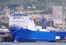 141.31m RoRo Cargo