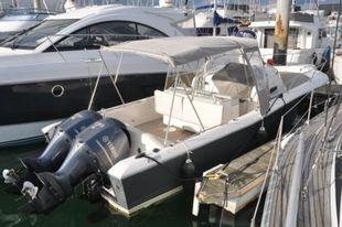 2008 WHITE SHARK 298