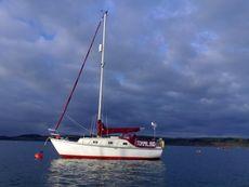 27ft Sailing Cruiser