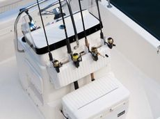 Boston Whaler - 150 MONTAUK