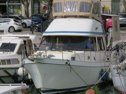 1989 Golden Star trader Sun deck 40