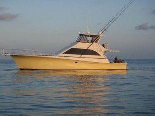 1991 Ocean Yachts Convertible