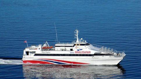 Fast Catamaran For Charter