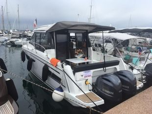 2018 MERRY FISHER 895