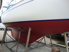 treated hull stb mid