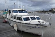 Birchwood Senator 29