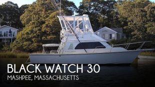 1989 Black Watch 30 Sportfish