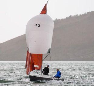 Squib number 42