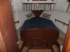 Aquafibre 38 Centre Cockpit - Forward Cabin