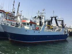 29 Meter Wetfish / Freezer Trawler